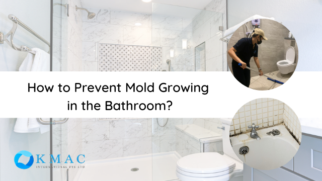 How To Prevent Mold Growing In Bathrooms Kmac Singapore